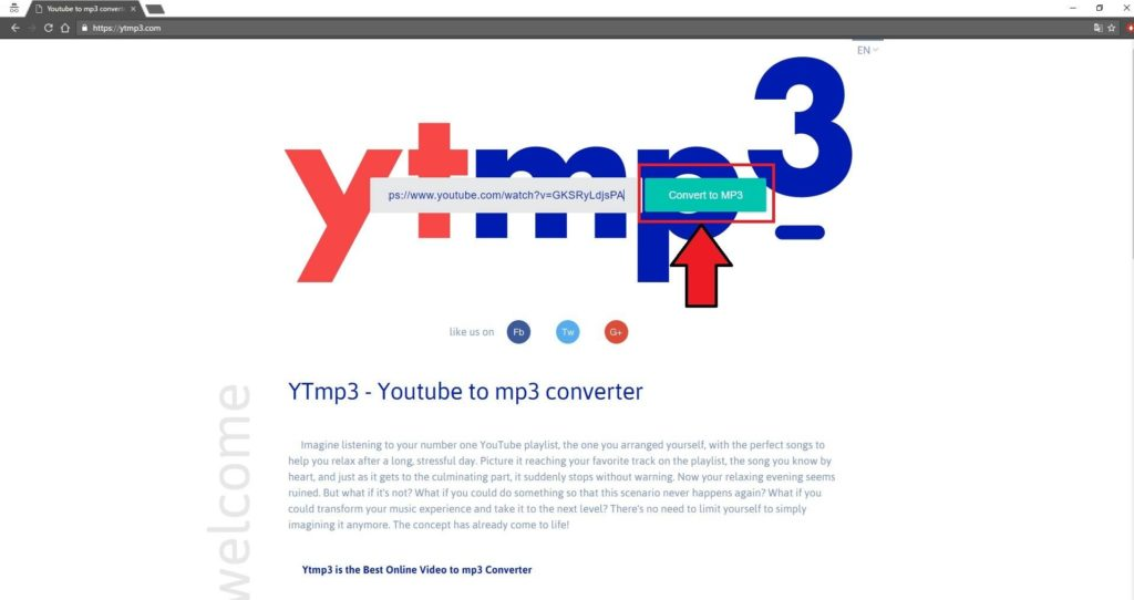 Ytmp31